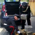 TIVOLI - 106 kg di droga sequestrata dai Carabinieri (3)