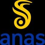 Nuovo logo (Foto Anas)