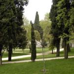 parco_degli_scipioni_scorcio