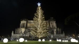 Spelacchio, l'albero di Natale di piazza Venezia (Foto Omniroma)