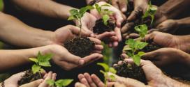 UNA COOPERATIVA ROMANA TRA LE PREMIATE PER I MIGLIORI PROGETTI DI AGRICOLTURA SOCIALE